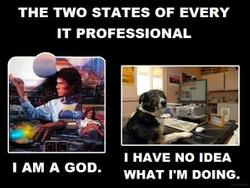 two states of it pros.jpg